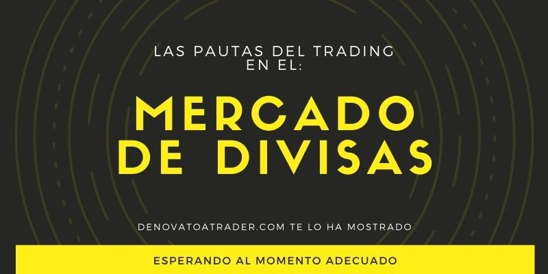 PAUTAS-DE-TRADING-EN-MERCADO-DE-DIVISAS